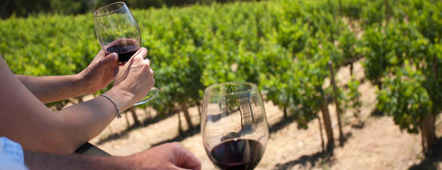 Happy in Tuscany - Wine Tour Chianti